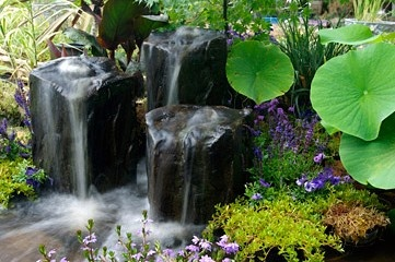 Waterscapes - Put's Ponds & Gardens